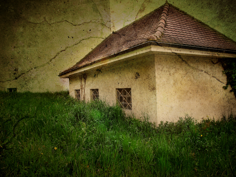 The house sunk in the grass