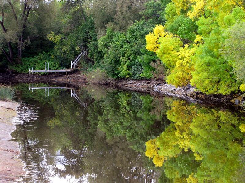 lautomne sur la rivière Couchepaganiche