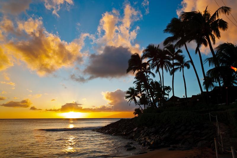 Napili Sunset in Maui 04024
