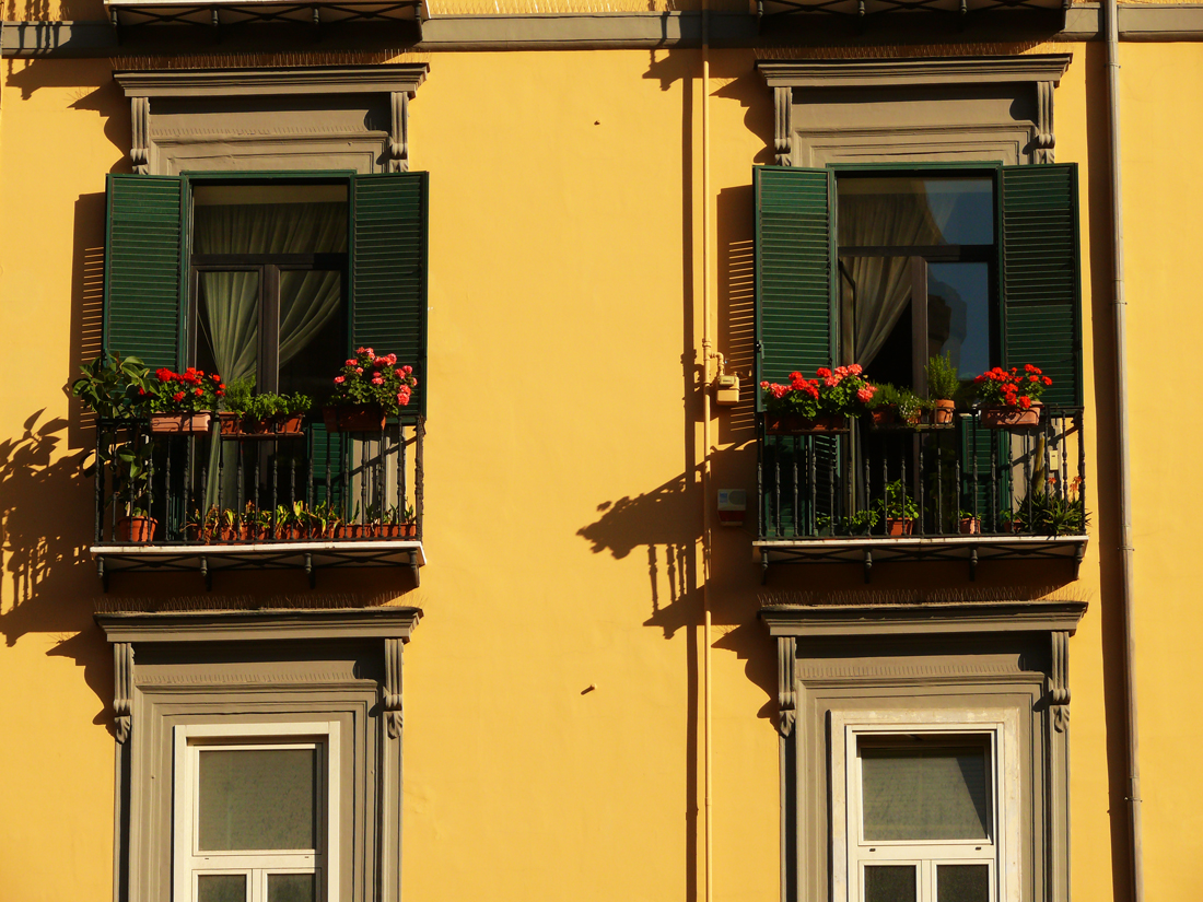 House of flowers web.jpg