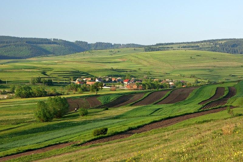View from Csíksomlyó