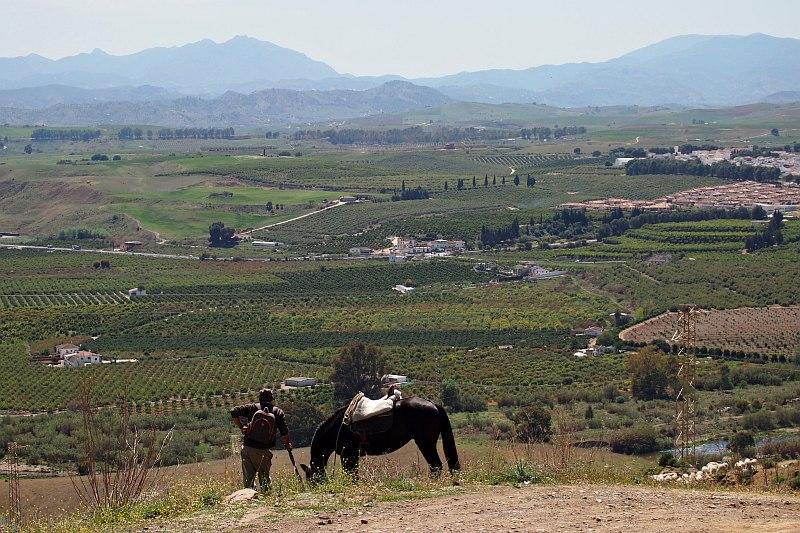 Guadalhorce Valley, near Pizarra