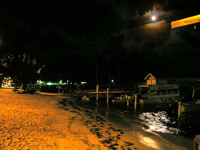 Ambergris Moon Night