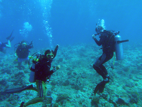 Gathering on top of the reef at the Blue Hole