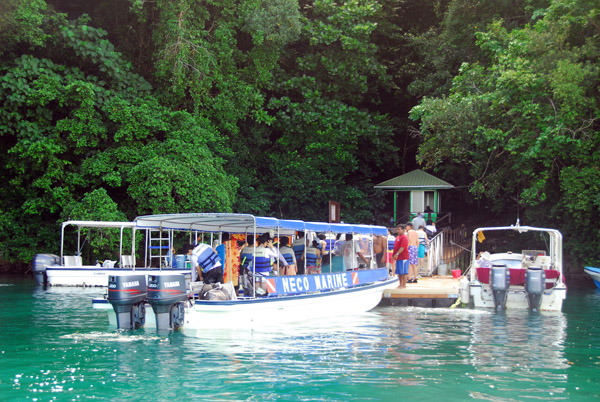 Tourist boats at the dock of Jellyfish Lake