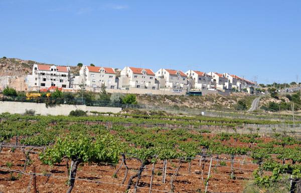 Israeli settlement at Ramat Mamra Givat Harsina (junction with rte 3507)