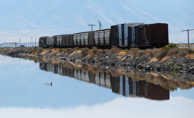 Two Union Pacific eastbounds (one is all wet)