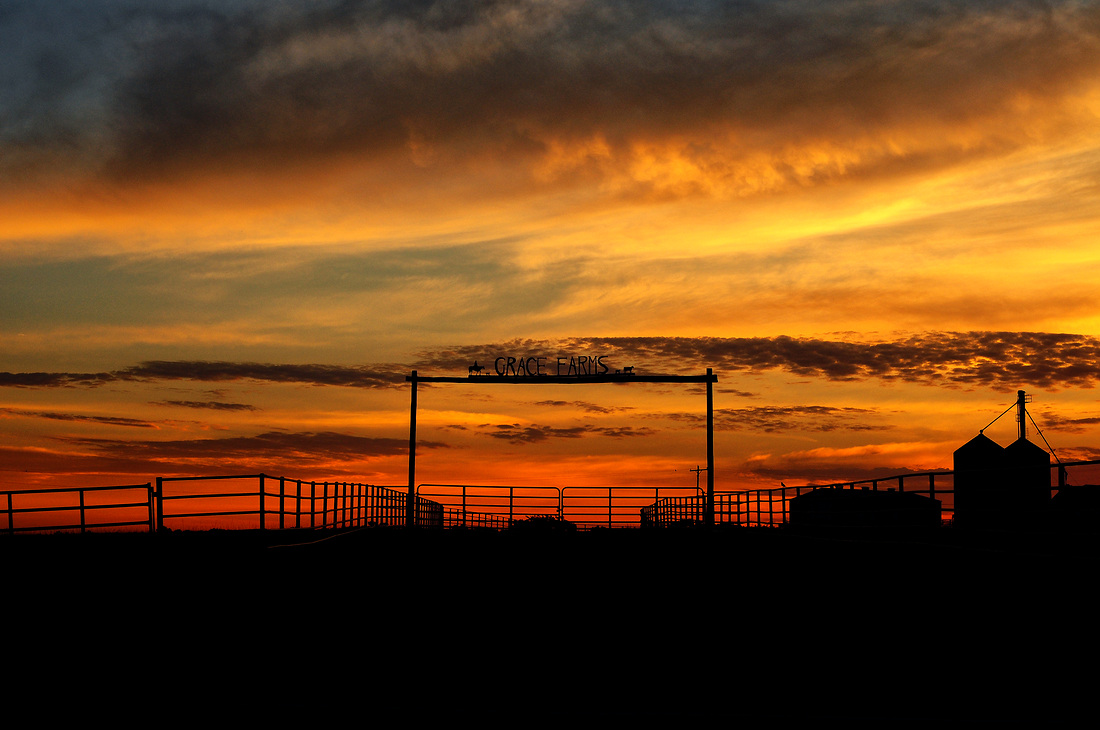 Sunrise at Grace Farms