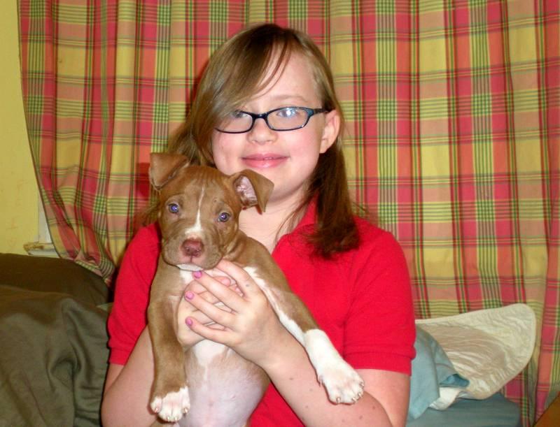 Karen and Zoeys new pit bull puppy, Loki.