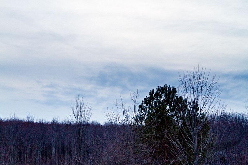 02/18/2013 - _MG_9647.jpg
