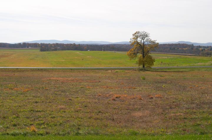 Gettysburg Field.jpg
