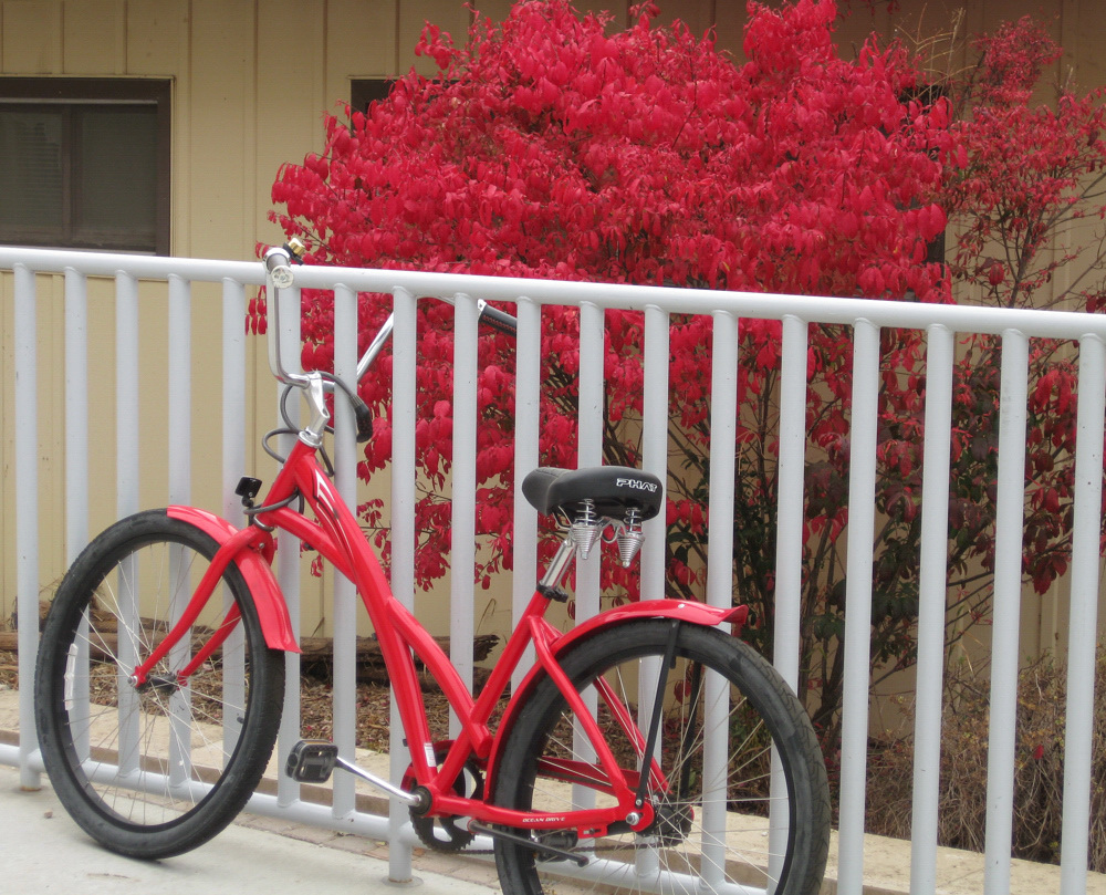 Red Bike and Red Leaves IMG_0496.jpg