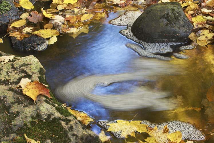 fall200810.jpg