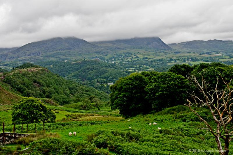 Wales Countryside-DSC_14151290.jpg
