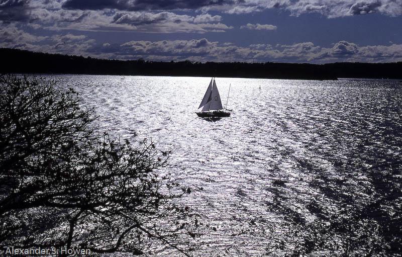 Sydney Harbour sailing
