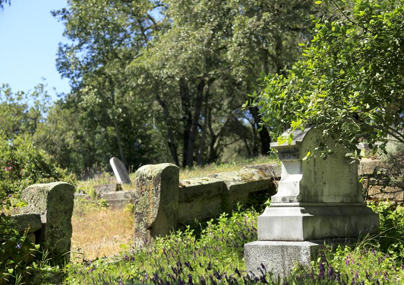 cemetery graves unkempt.jpg
