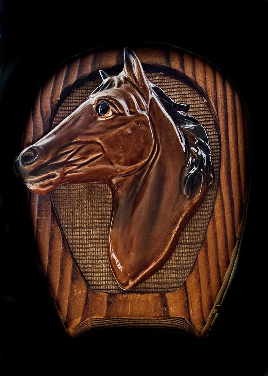 Stallion - Feb 2011  Challenge #1