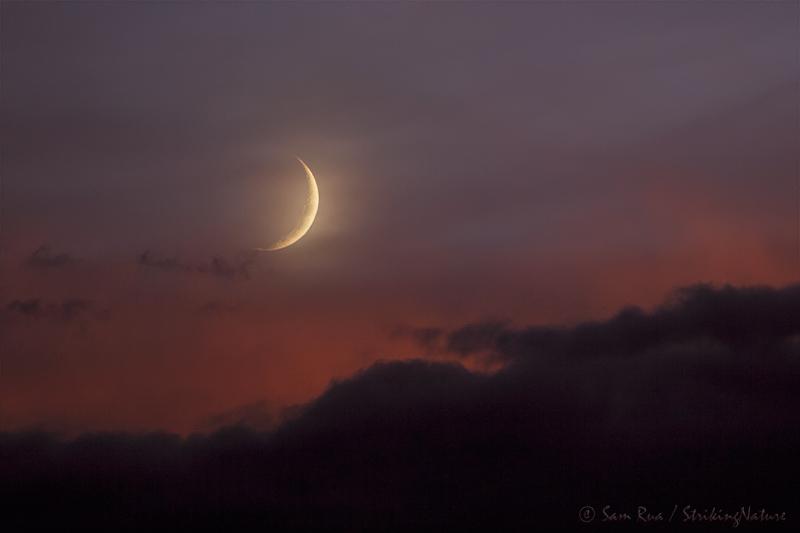Monsoon Moon