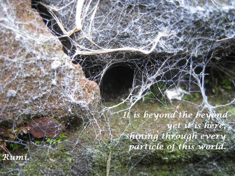 Beyond the Beyond.JPG