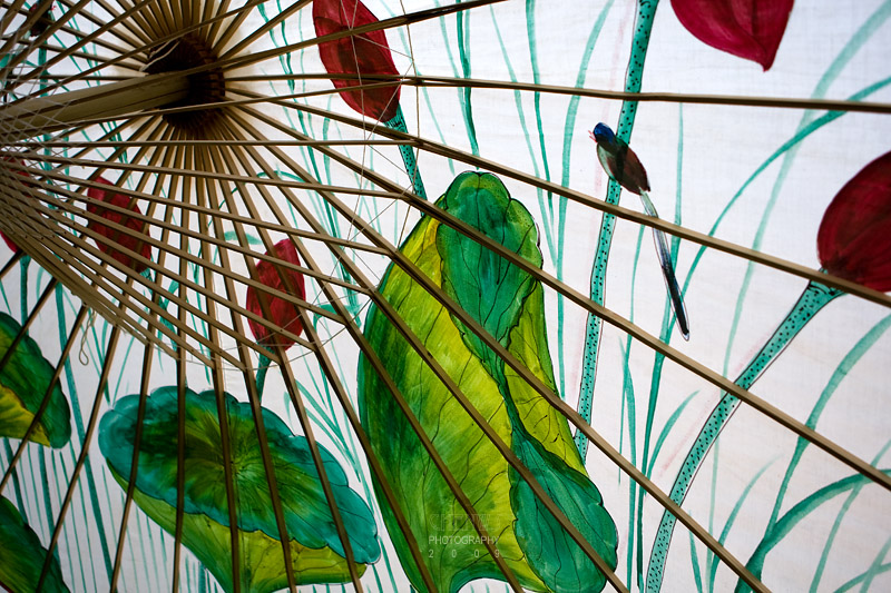 A painted umbrella; bird and lotus plant.