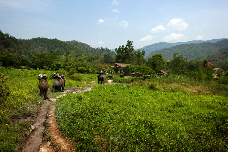The elephant ride takes the tourist to a Meo hill-tribe village