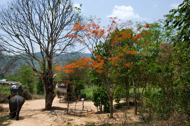 Coming to another village, of the Karen hill-tribe