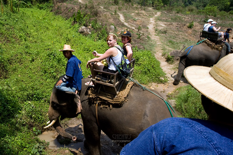 Mahout and tourist trekking the hills on elephant back, Thailand