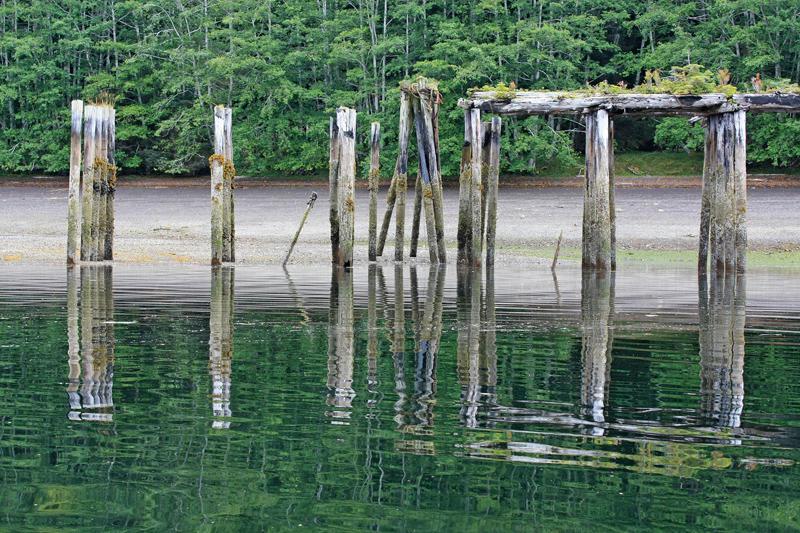 Abandoned trestle for logging on Moresby Island