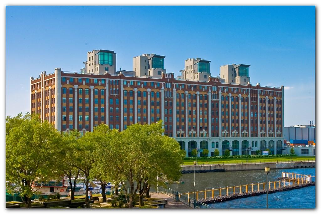 The Condominium