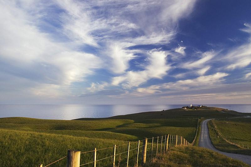 Katiki Point, Otago, New Zealand
