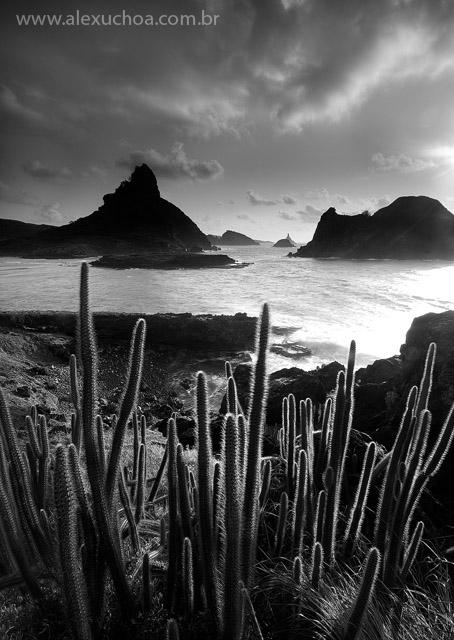 Praia do Sueste, Fernando de Noronha, Pernambuco 8960 090916.jpg