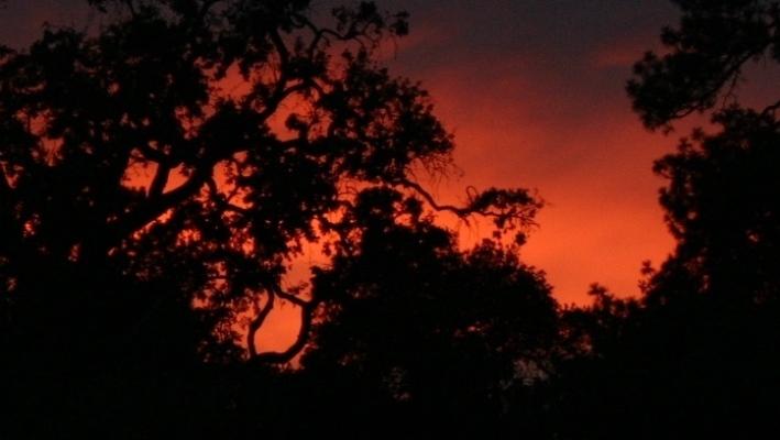 St. Helena Sunset