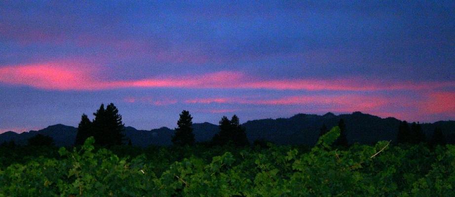 Same Sunset, Opposite Direction