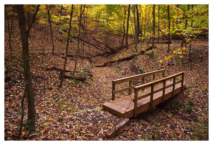 Bridge to the autumn