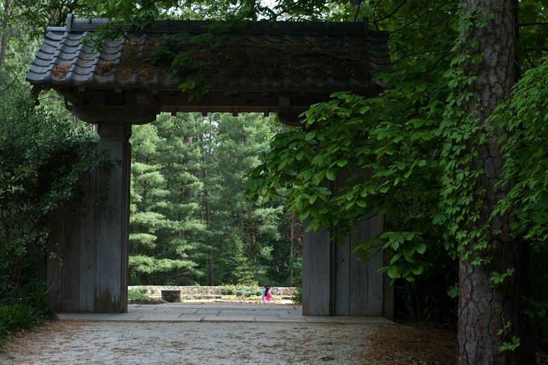 Leaving Asiatic Arboretum