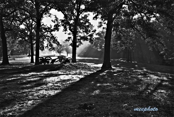 Shiloh, Foggy Morning