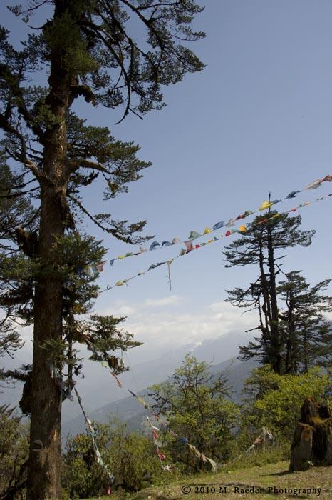 Pela Pass with prayerflags