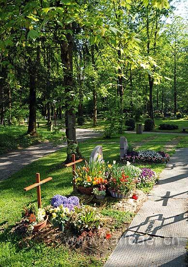 Waldfriedhof (94122)