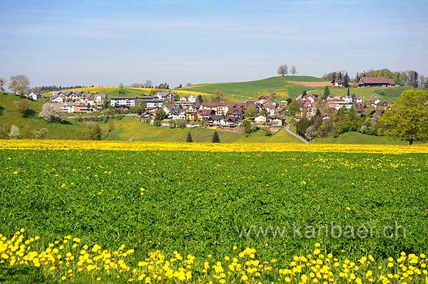 Neuheim (103835)