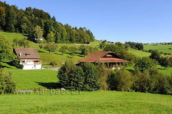Neuheim (116187)