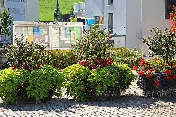 Dorfplatz (116113)