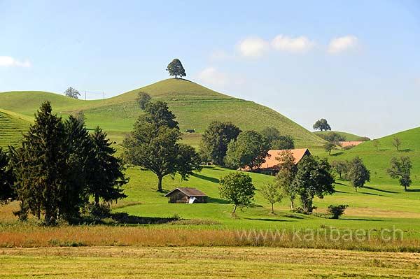 Moraenenlandschaft (126974)