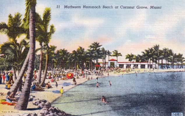 1950s - Matheson Hammock, Coconut Grove