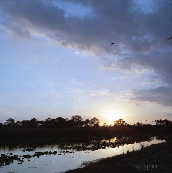 sunset at babcock