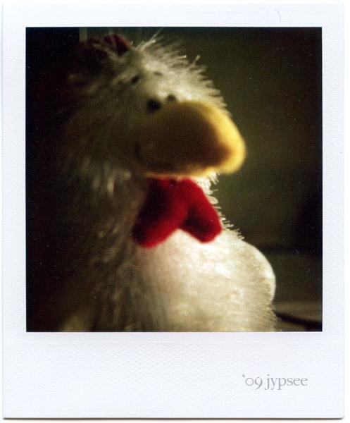 fuzzy bird