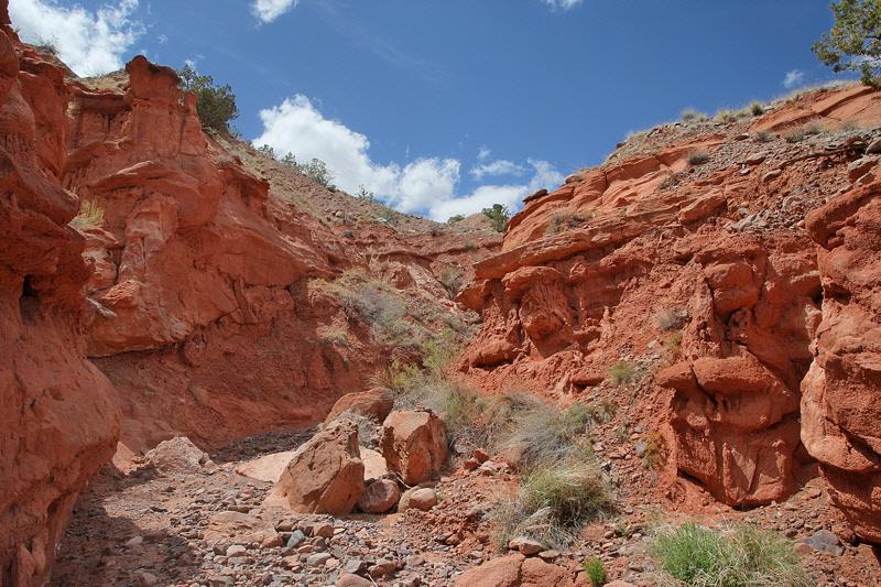 Dry Canyon (7263)