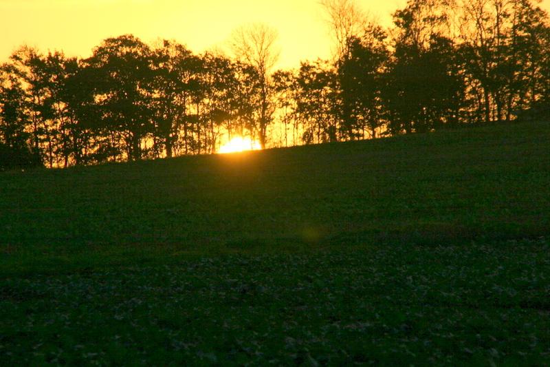 Sol opgang / Sunrise
