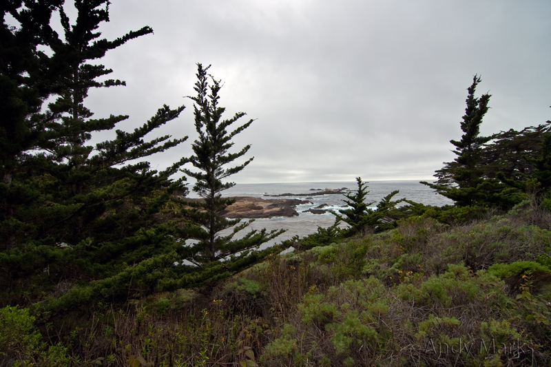 View from Cypress Grove