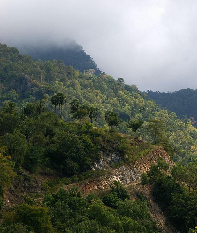 Atauro landscape