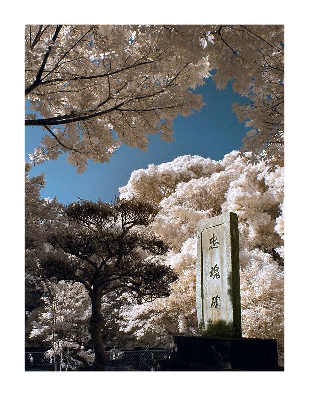潮御崎神社 Shionomisaki